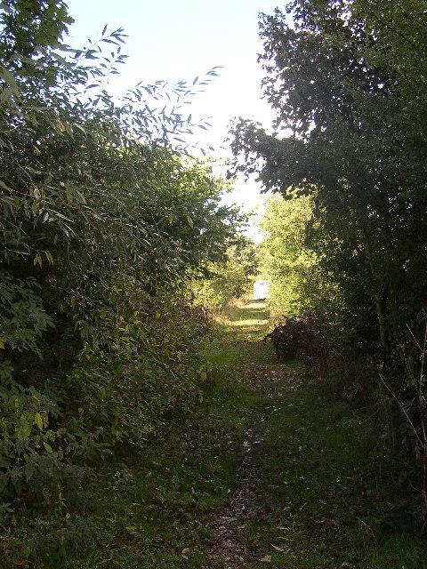 Disused tram road and driveway, Rastrick