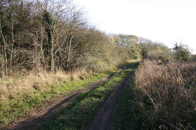 Sewstern Drift near Wyville