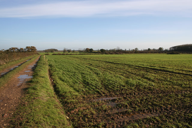 Farmland near Wyville