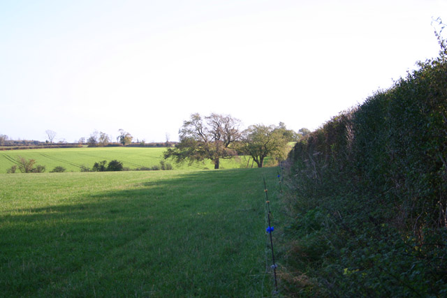 Farmland near Wyville