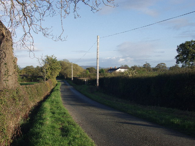 Rural lane near Spring Grove