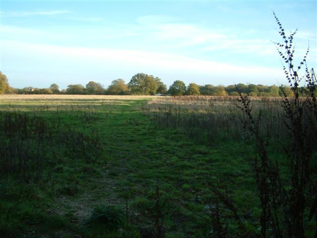 The footpath to the A33