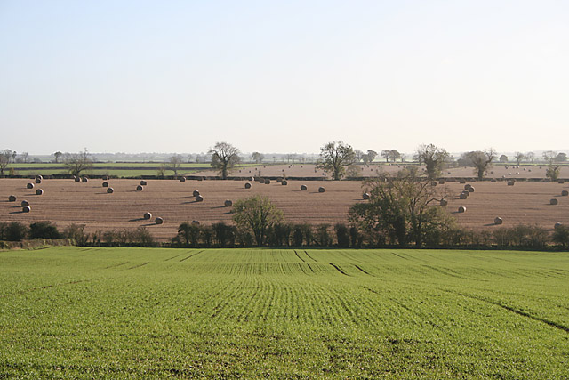Farmland near Stonesby