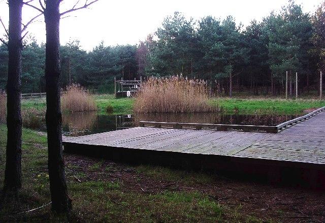 Pond, Sherwood Pines Forest Park