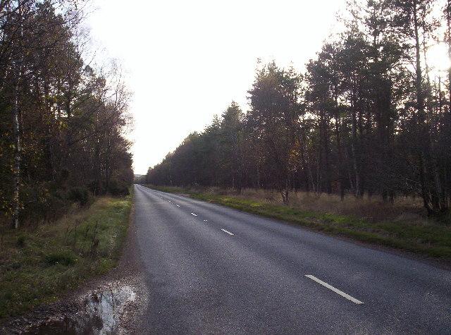 B966 running through Edzell Wood