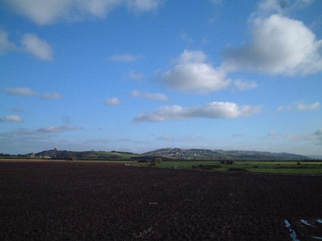 Field of Brean Farm