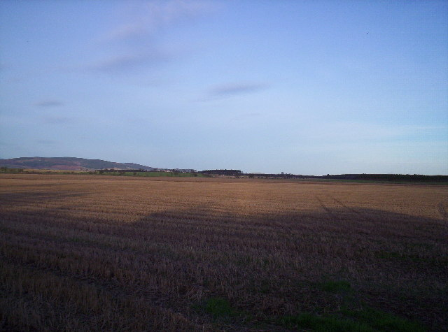 Field with Sauchieburn in the distance