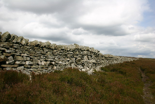 Wall on Bulbeck Common