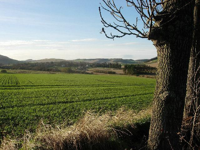 Farmland east of Kilmany