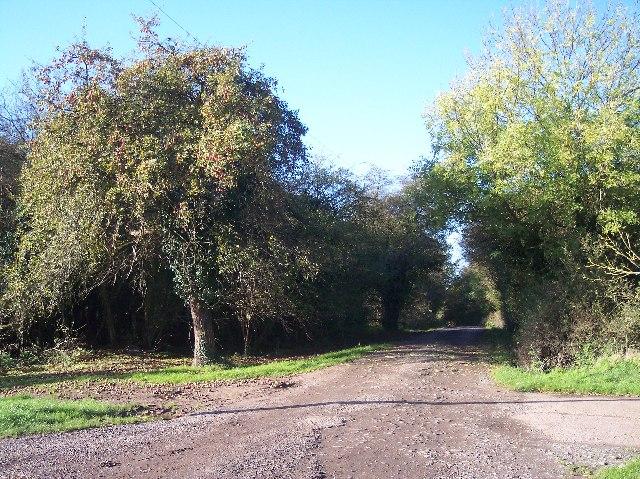Brownheath Common
