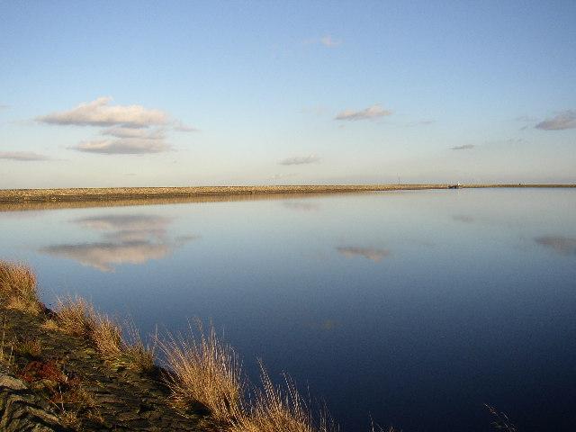 Deer Hill Reservoir, Lingards
