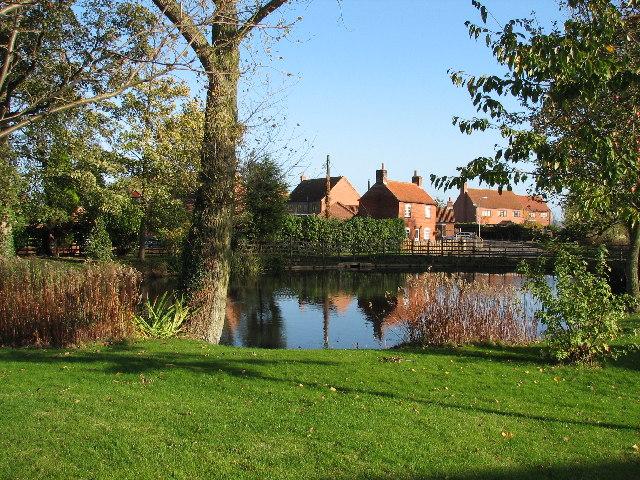Village Pond, Fenton