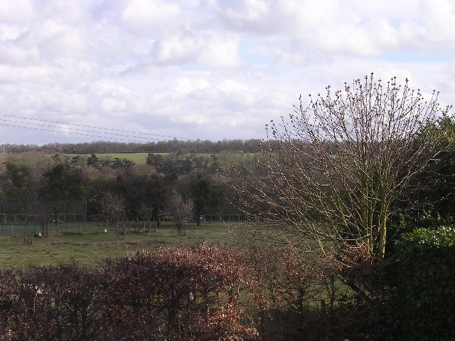 Field off Wells Lane