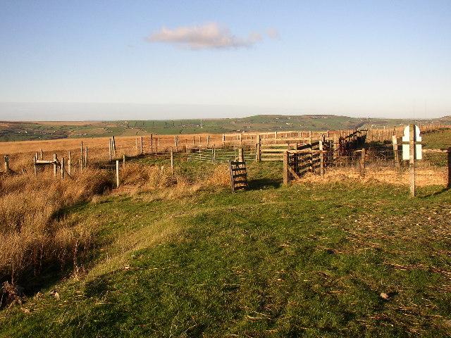 Sheep pens, Lingards Wood Moor, Marsden
