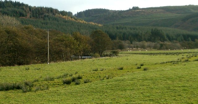 River Meadow at Kilmichael Glassary, Argyll