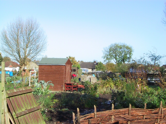 Yew Tree Allotments