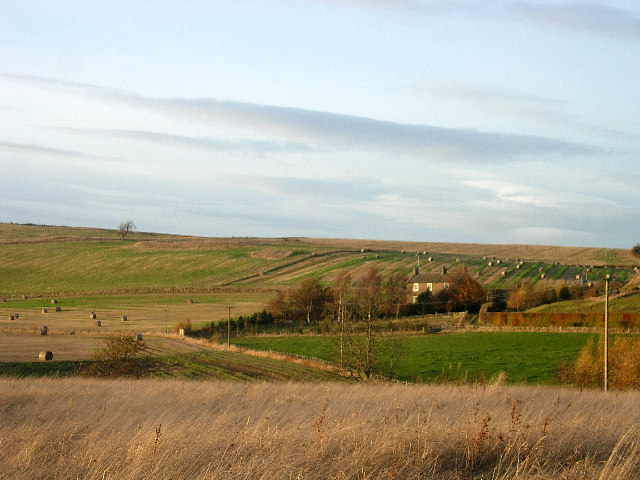 Farmland west of Fincraigs