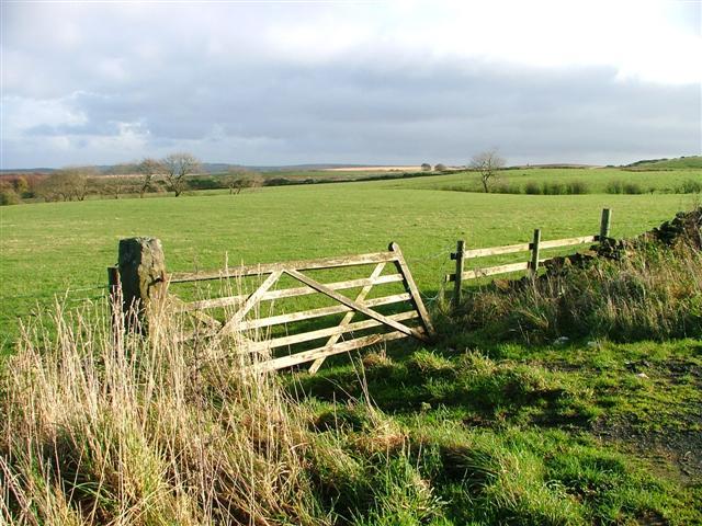 Gate and Pasture, Gerrick Moor