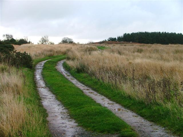 Public Bridleway to Stang Howe