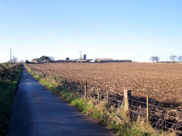 Dunstan Hill farm