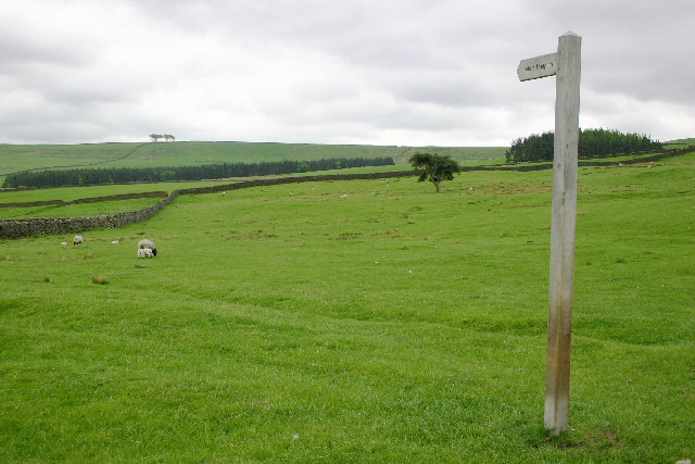 Footpath Sign west of Harehope