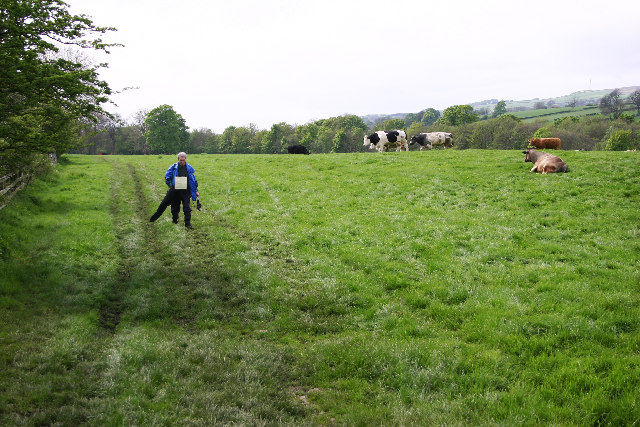 Frosterley to Wolsingham Footpath