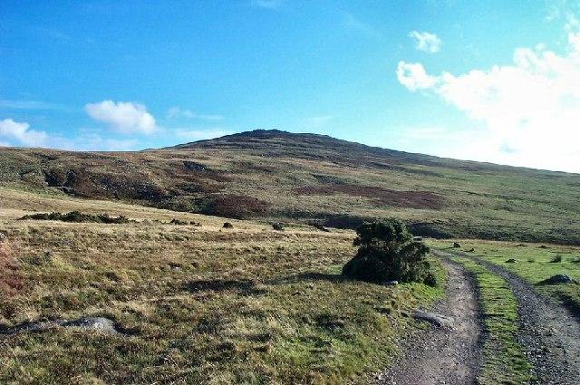 View from Blackdown - Dartmoor