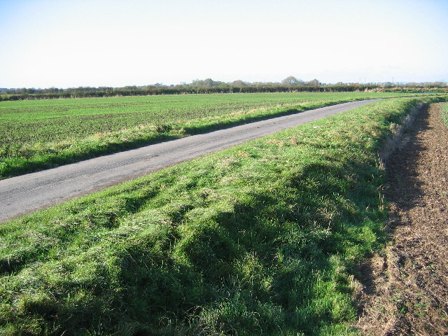 Farmland SE of Beswick