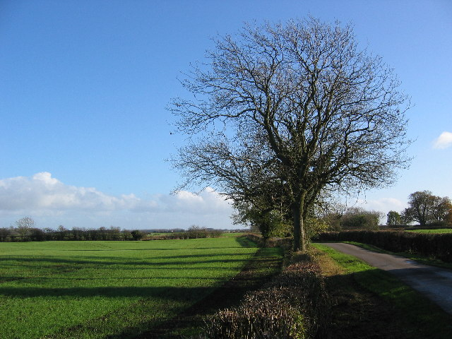 Farmland near The Monks Barn