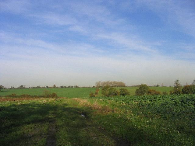 Farm Track, Magdalen Laver, Essex