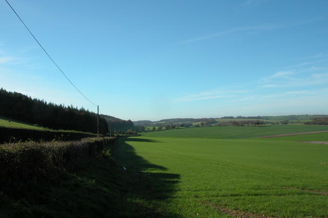 View along the foot of Broadhalfpenny down.