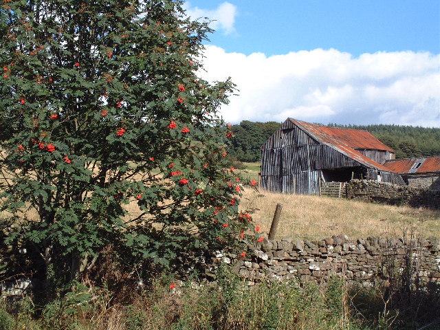 Farm Building, Eggleston village