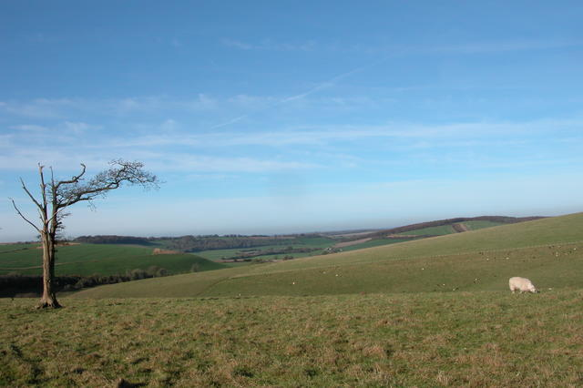View across Teglease Down