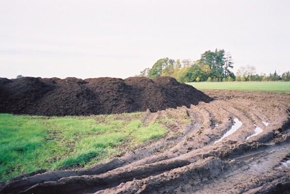 Heap of manure