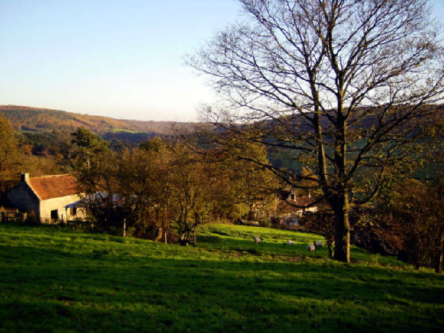 Lower Slopes of Hawnby Hill towards the Village