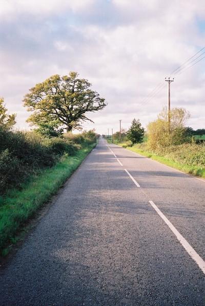 The Drift Road