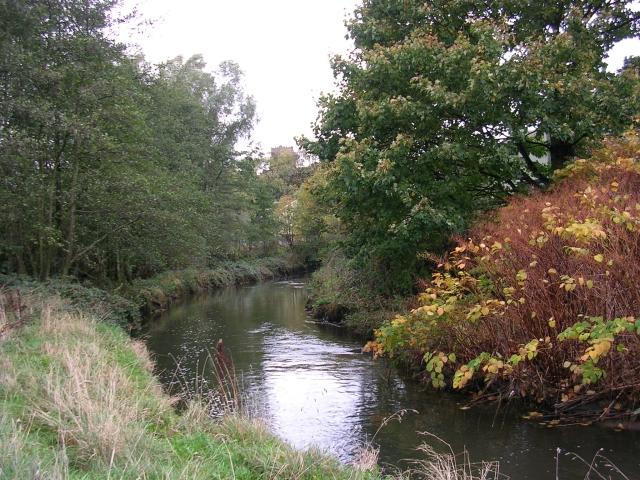 Wince Brook