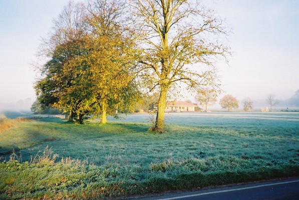 Misty dawn, Pinkneys Green