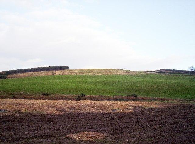 Edzell Hill