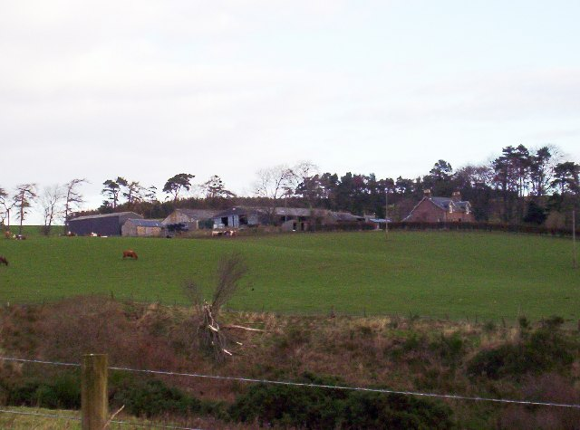 Margie Farm