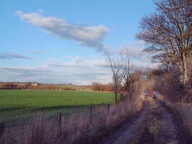 The Weardale Way near Page Bank Bridge