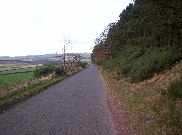 Road between Edzell and Tigerton