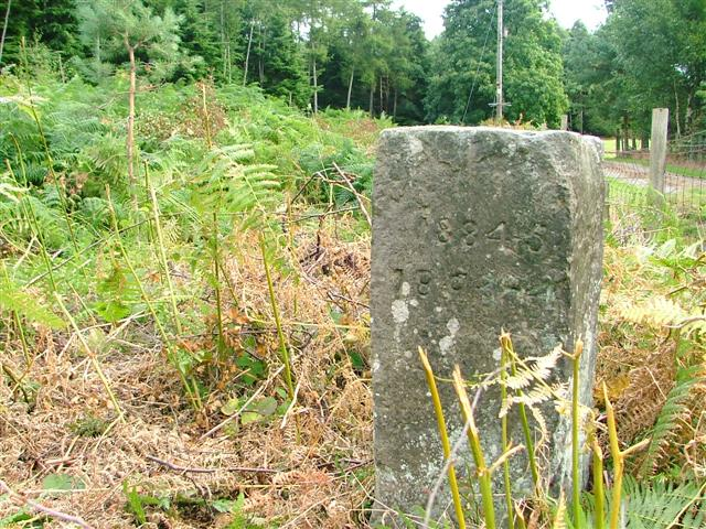 Marker Stone, Church Plantation