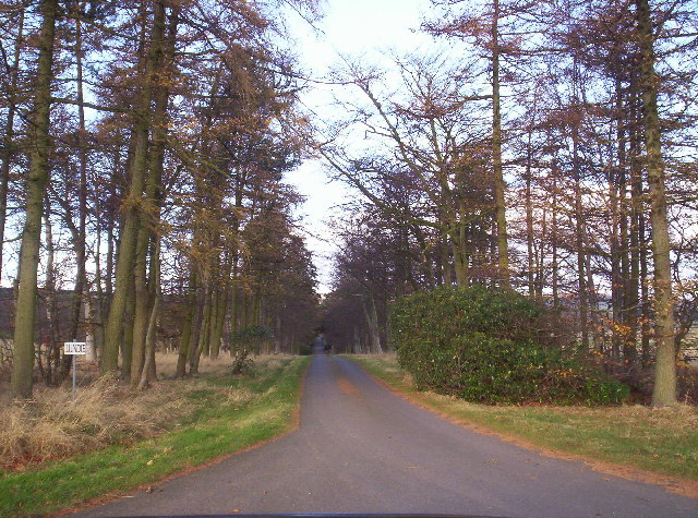 Road to Lundie Castle