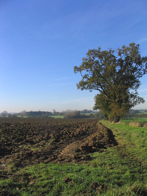 Ploughed Field, Willingale, Essex