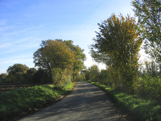 Country Lane, Beauchamp Roding, Essex