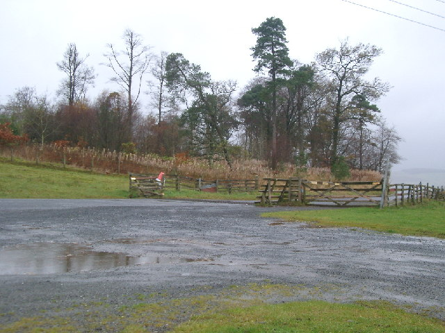 Cattle Grid and Tanwell Woods