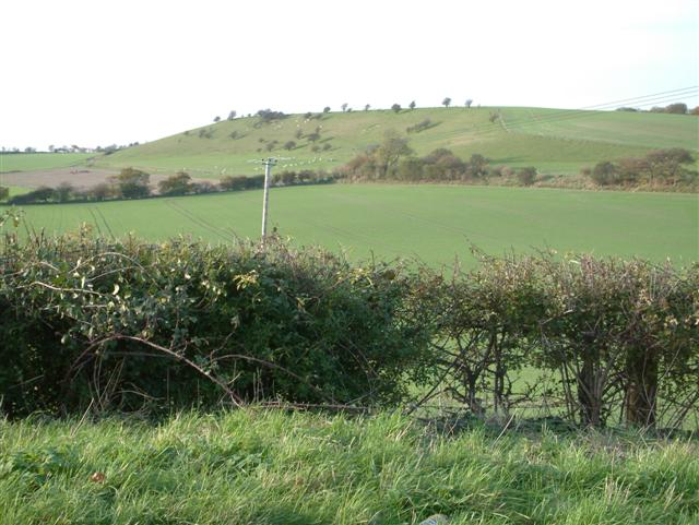 Looking West to the South side of Lollingdon Hill