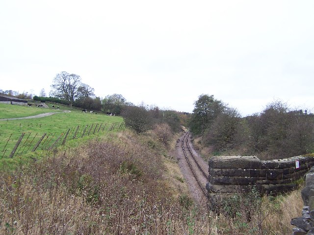 Mineral Line from Swinden Quarry