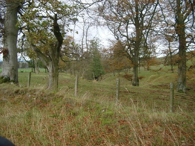 Pond Plantation, Shibden Hill